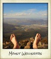 MtWellington.jpg