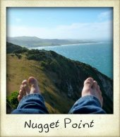 nugget-point