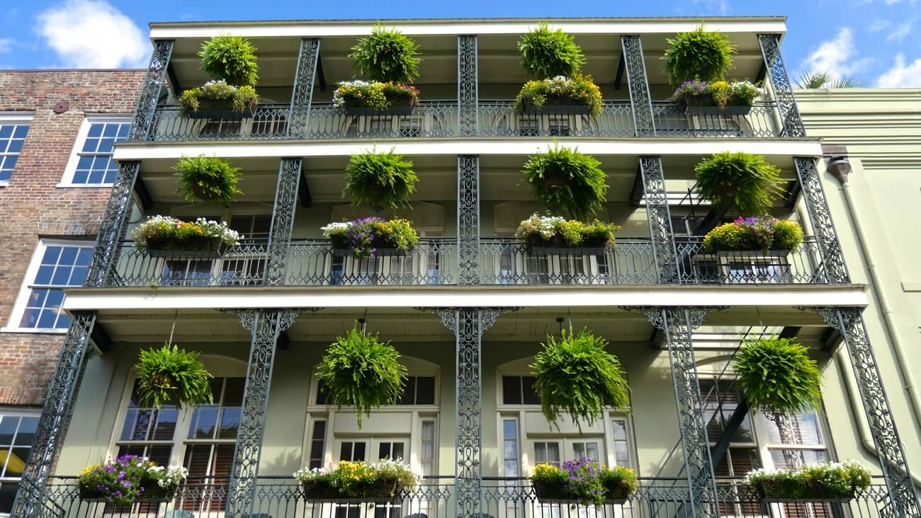 new-orleans37